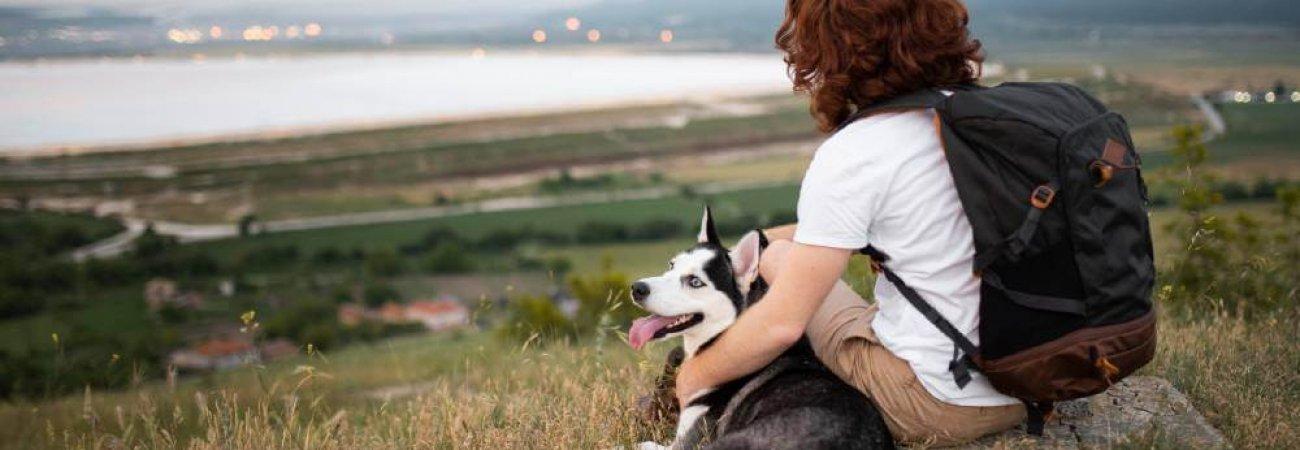 vacaciones con mascota